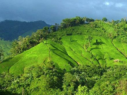 Saqafafang Mountain